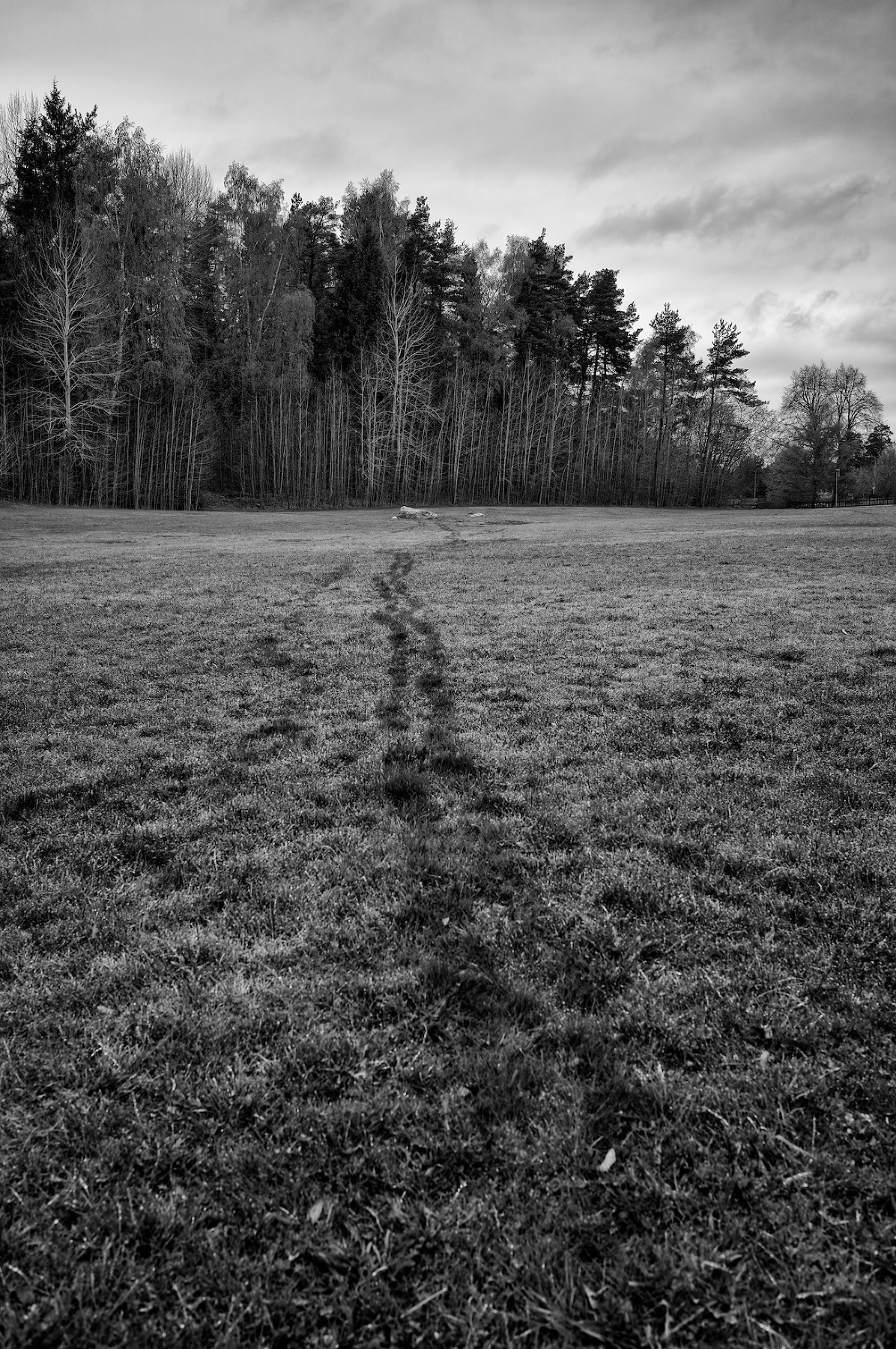 untitled_2014-05-08_18-29-34_L1001441_Copyright-Max-Dahlstrand(pp_w1196_h1800)